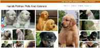 harish pathak pets and kennels